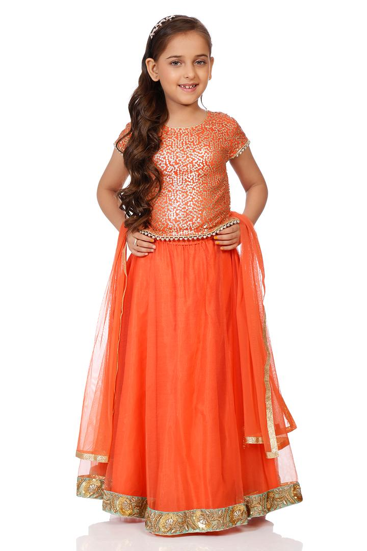 Orange Nylon Straight Lehenga Set - KW2839AW18ORG