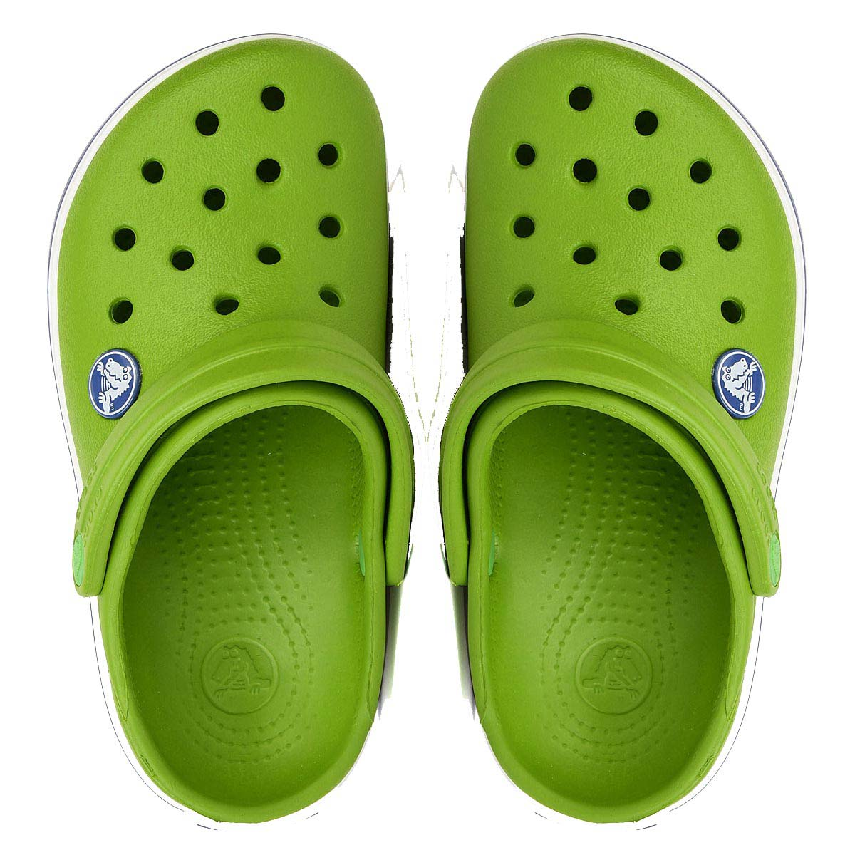 e527a8a6a Crocs Crocband Kids (Parrot Green White) Online at Lowest Price in India
