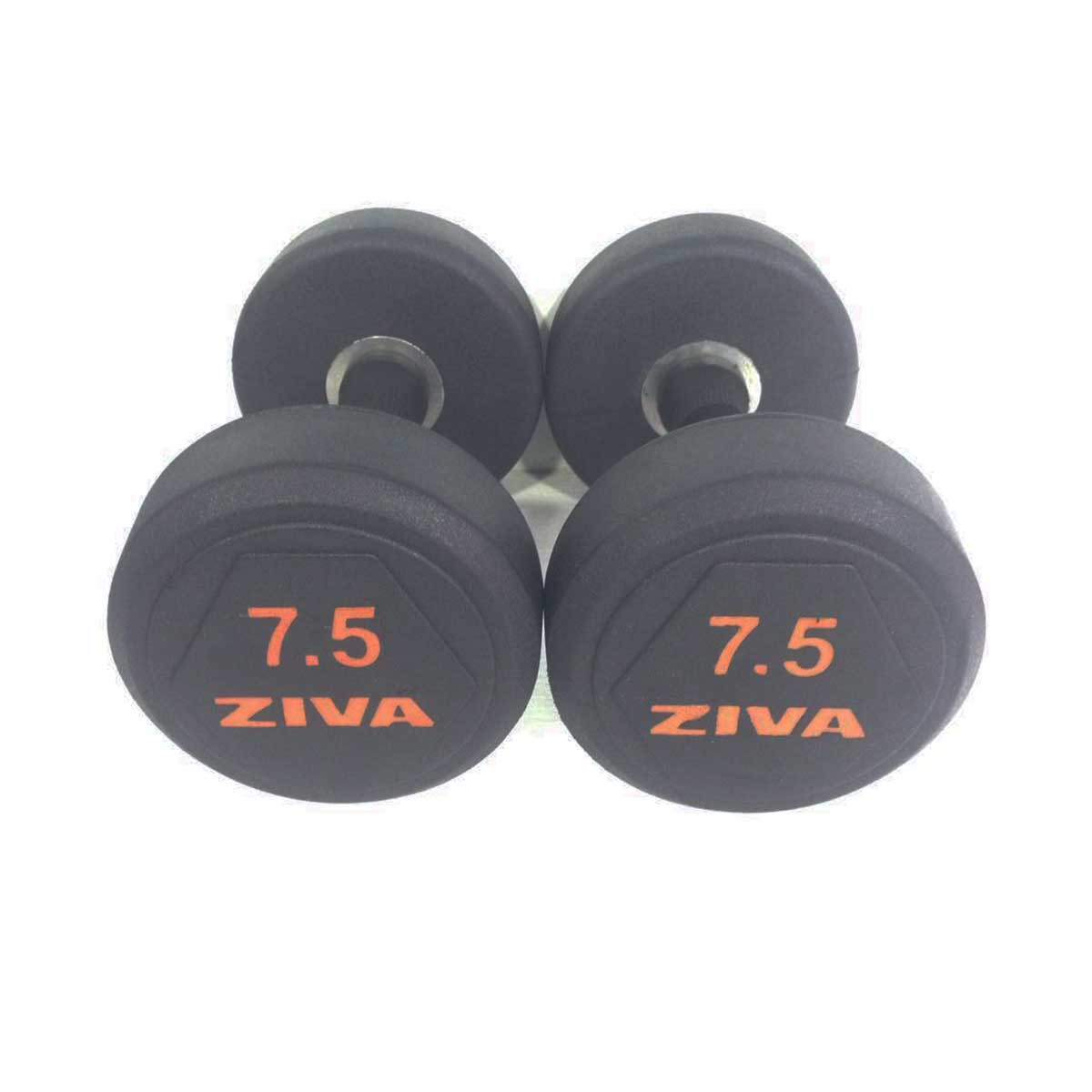 Buy Ziva Sl Solid Steel Rubber Dumbbell Set Online Indiafitness Products